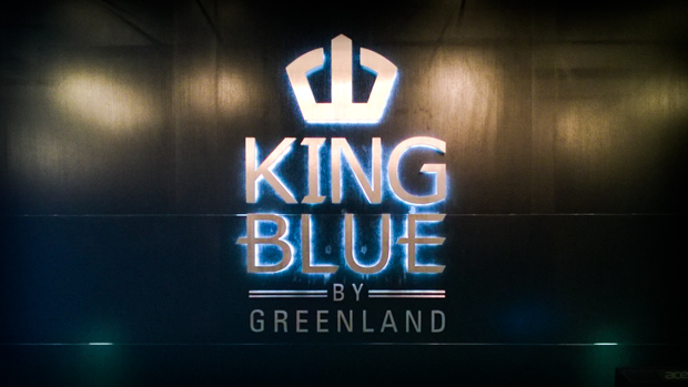 <strong>King Blue<span><b>view larger</b></span></strong><i>→</i>